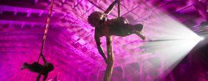 aerial-silks-show-world