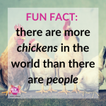 35 Fun Facts You Probably Didn't Know