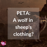 PETA A wolf in sheeps clothing